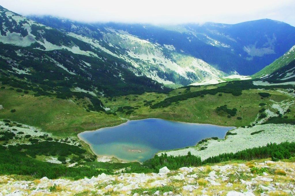 Lacul Netiș